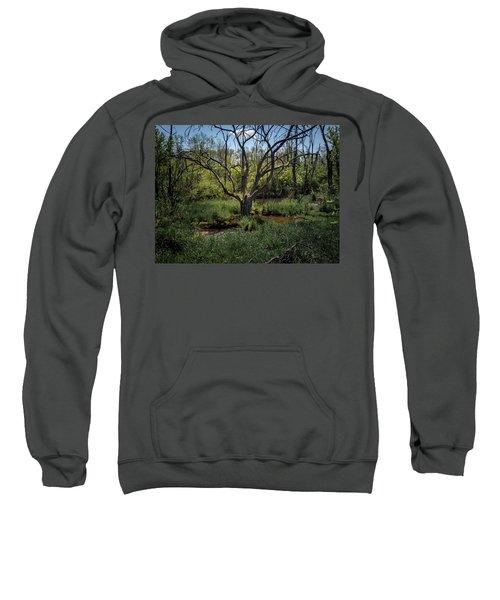 Growning From The Marsh Sweatshirt