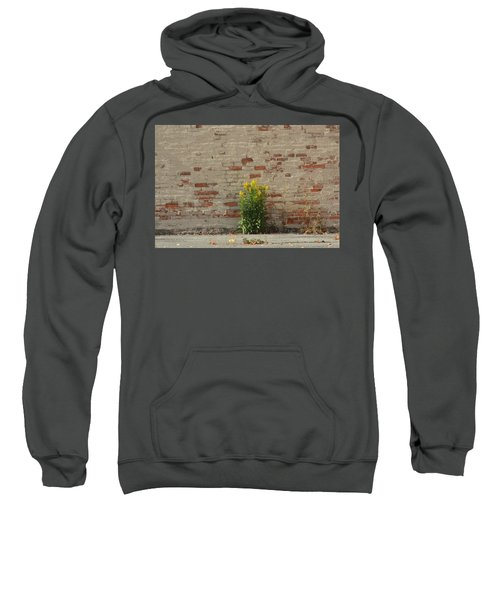 Growth With In The Concrete Walls Sweatshirt
