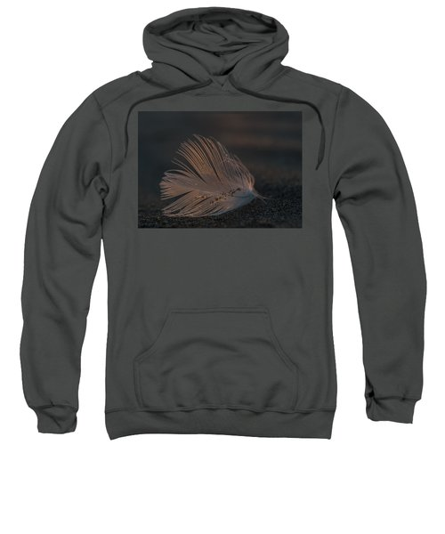 Gull Feather On A Beach Sweatshirt