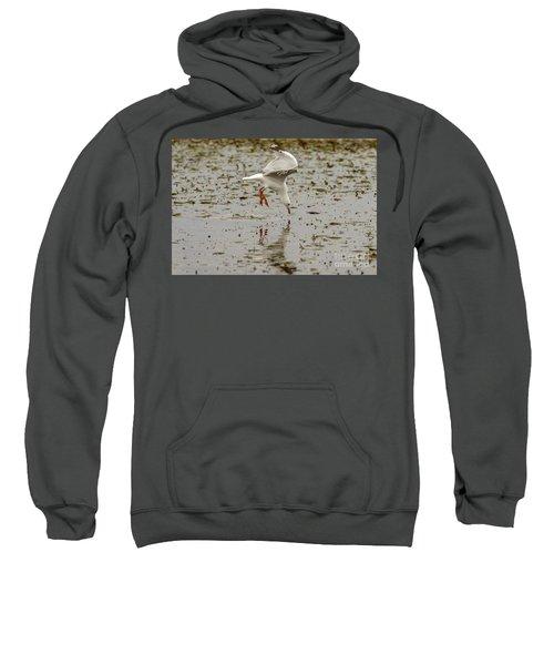 Gull Fishing 01 Sweatshirt