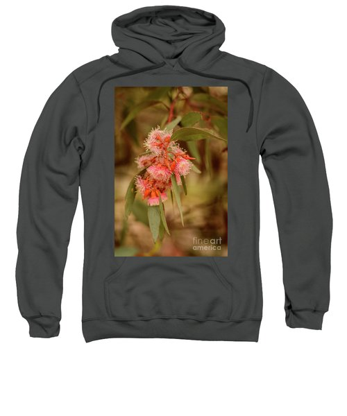 Sweatshirt featuring the photograph Gum Nuts 2 by Werner Padarin