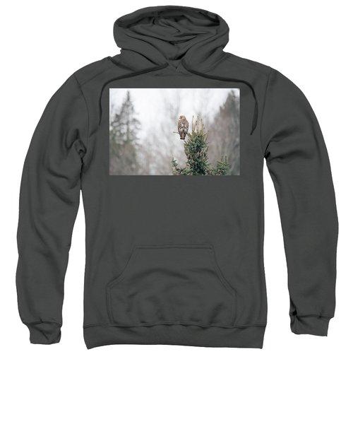 Hal Hanging Out Sweatshirt