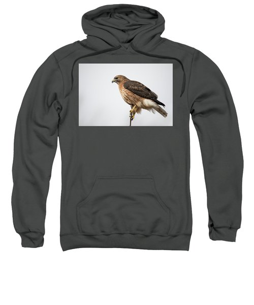 Hal The Hybrid Portrait 2 Sweatshirt