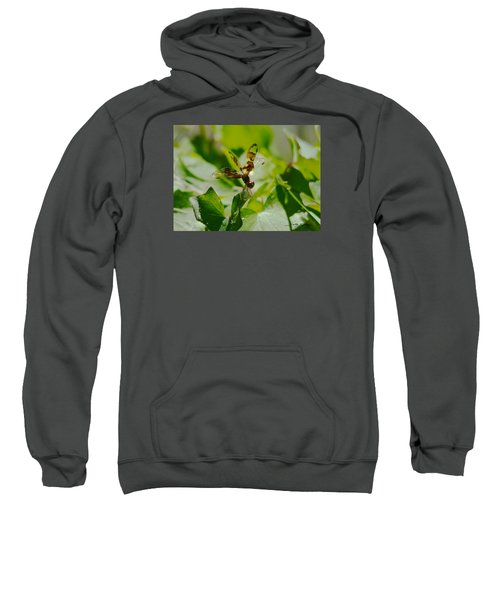 Halloween Pennant Sweatshirt