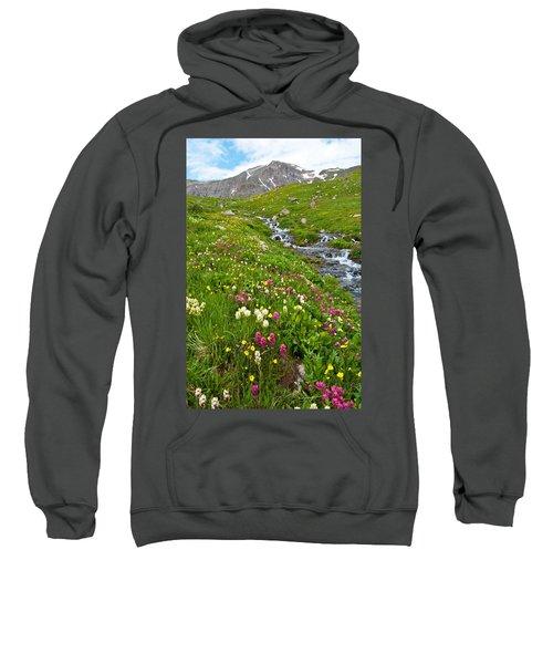 Handie's Peak And Alpine Meadow Sweatshirt