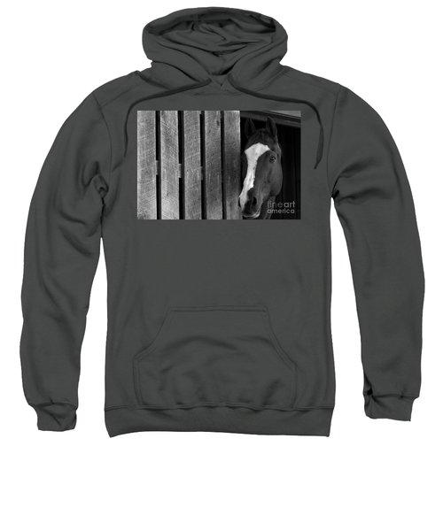 Handsome T Sweatshirt
