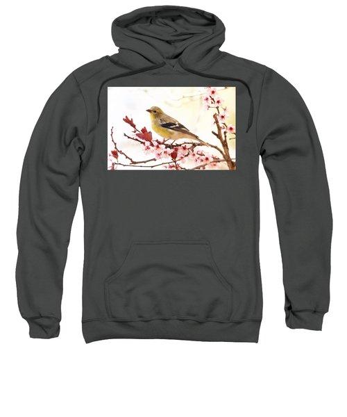 Happy Goldfinch Sweatshirt