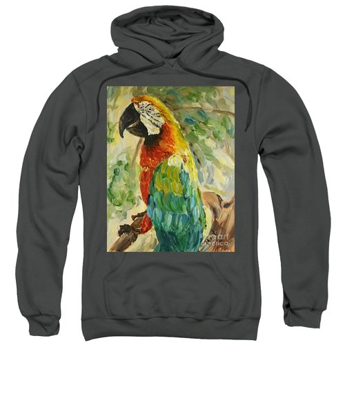 Happy Parrot Sweatshirt