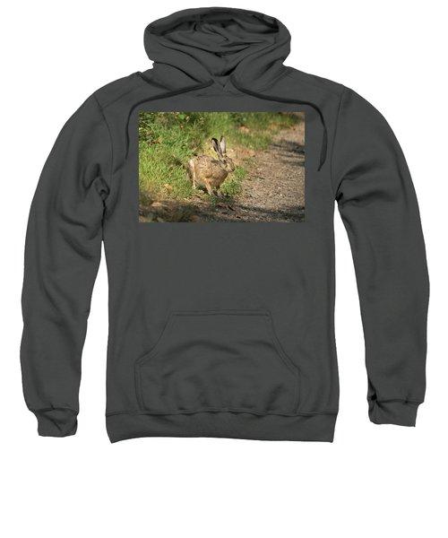 Hare In The Woods Sweatshirt