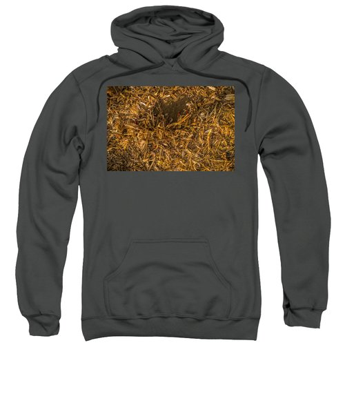 Harvest Leftovers Sweatshirt