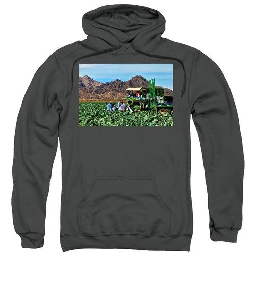 Harvesting Broccoli Sweatshirt by Robert Bales