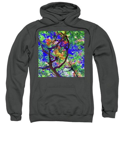 Hawaii Shower Tree Flowers Sweatshirt