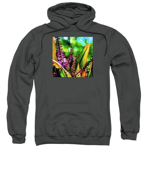 Hawaii Ti Leaf Plant And Flowers Sweatshirt