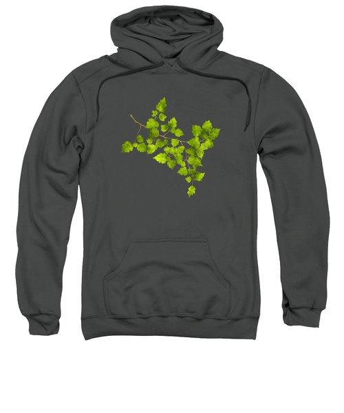 Hawthorn Pressed Leaf Art Sweatshirt by Christina Rollo