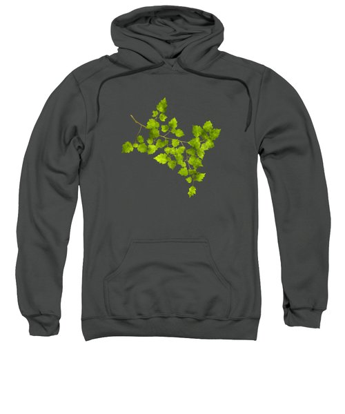 Hawthorn Pressed Leaf Art Sweatshirt