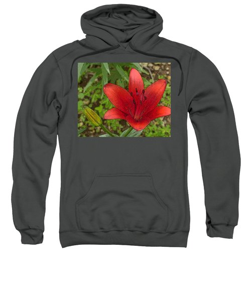 Hazelle's Red Lily Sweatshirt