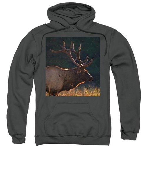 Head Of The Herd Sweatshirt