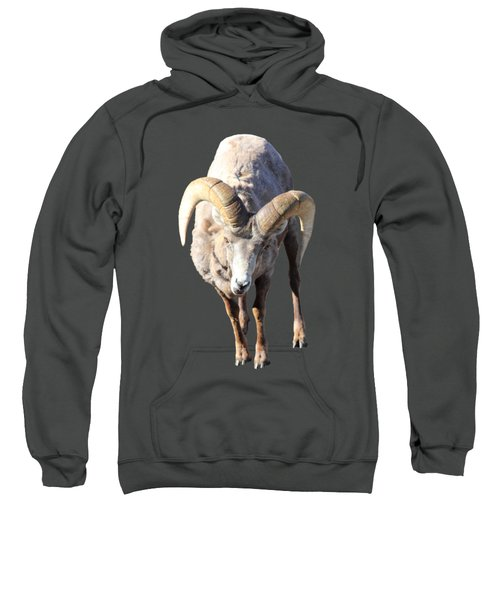 Head-on Sweatshirt
