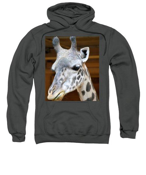 Heads Up Sweatshirt