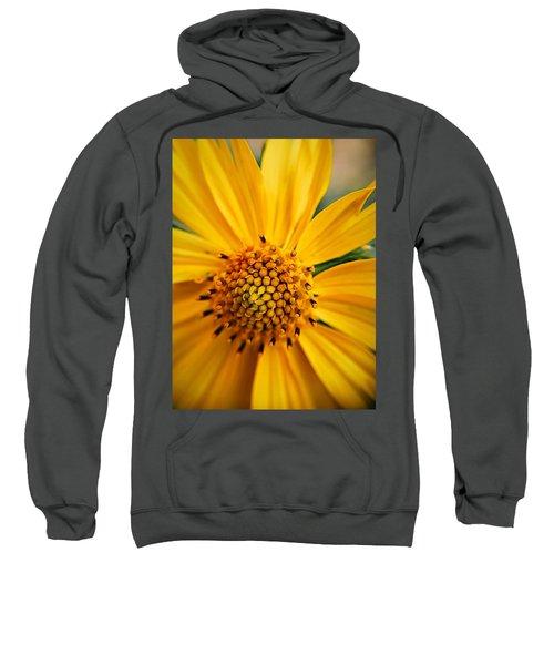 Heart And Soul Sweatshirt