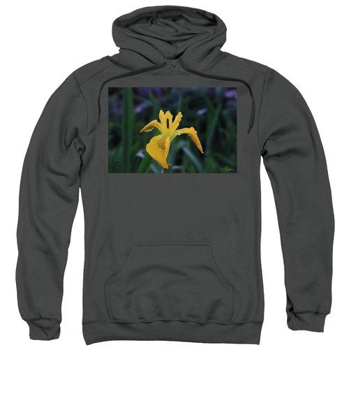 Heart Of Iris Sweatshirt