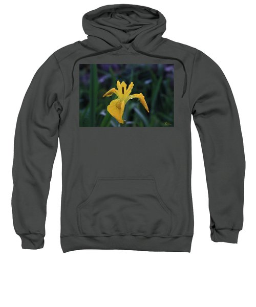 Heart Of Iris Sweatshirt