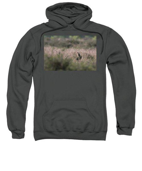 Heath Song  Skylark Sweatshirt