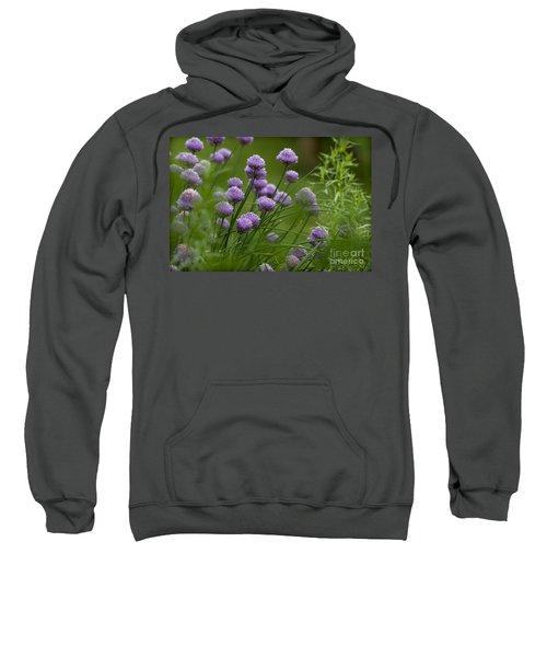 Herb Garden. Sweatshirt