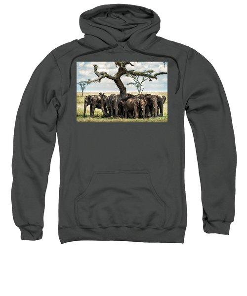 Herd Of Elephants Under A Tree In Serengeti Sweatshirt