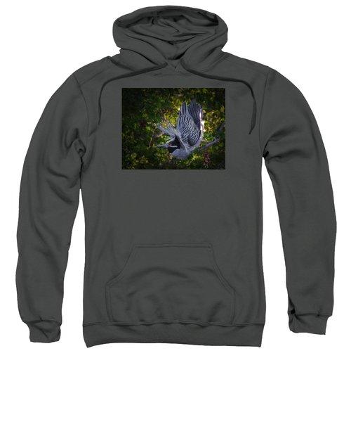 The Ritual Sweatshirt