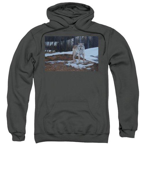 Hesitation Sweatshirt