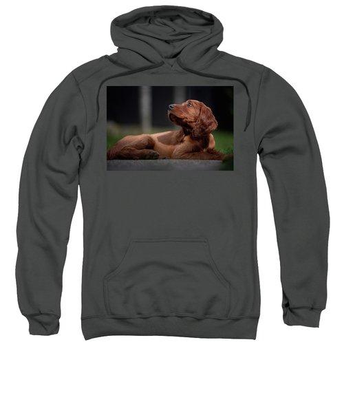 Hey You Sweatshirt