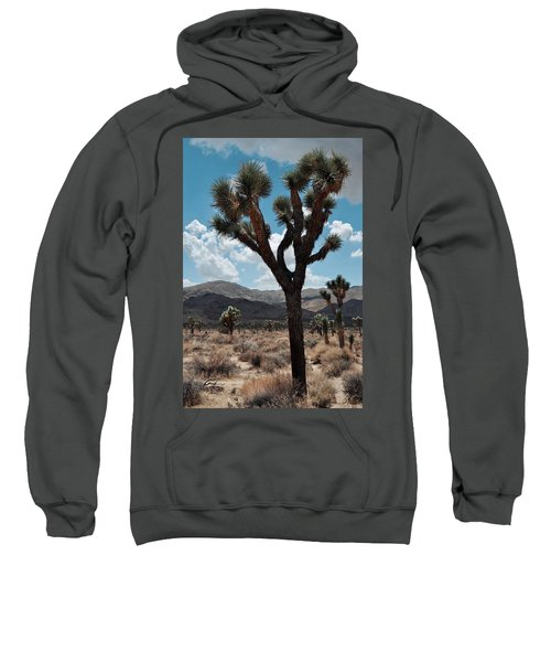 Hidden Valley Joshua Tree Portrait Sweatshirt