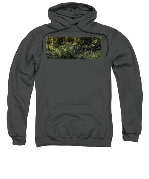 Hidden Wildflowers Sweatshirt