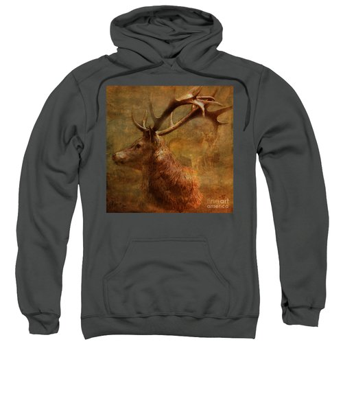Hide And Seek 2015 Sweatshirt