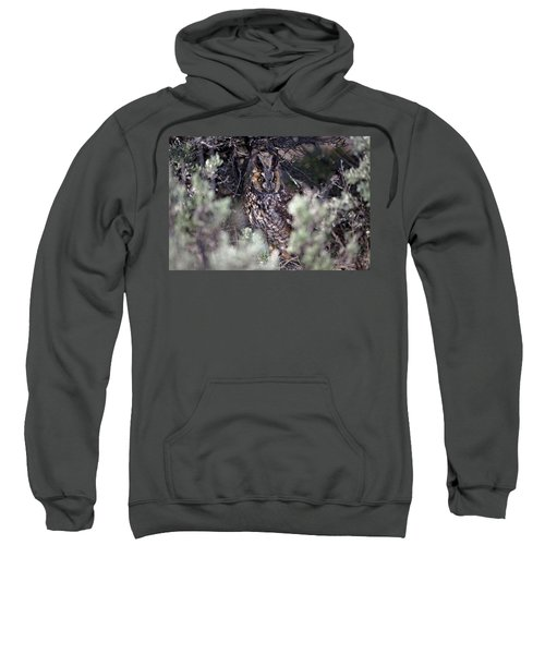 Hide And Seek Sweatshirt