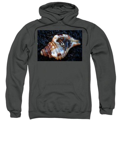 Hiding Place Sweatshirt