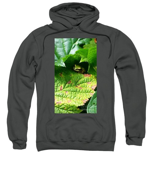 Hiding Tree Frog Sweatshirt