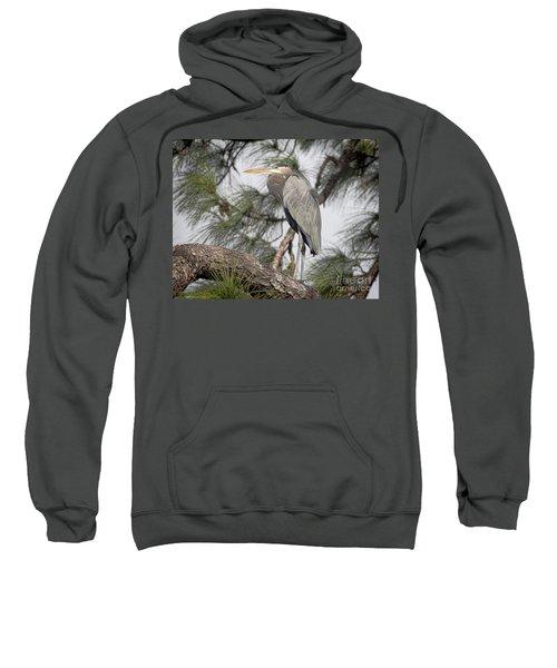 High In The Pine Sweatshirt