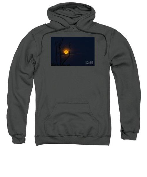 Highland Moon  Sweatshirt