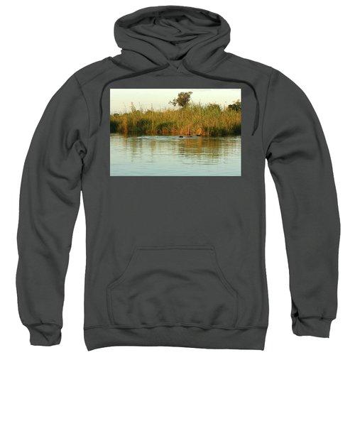 Hippos, South Africa Sweatshirt