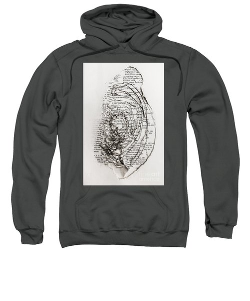 Hole In The Official Story Sweatshirt