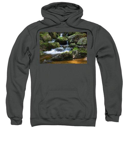 Holtemme, Harz Sweatshirt