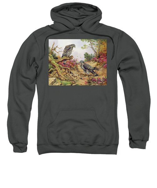 Honey Buzzards Sweatshirt by Carl Donner