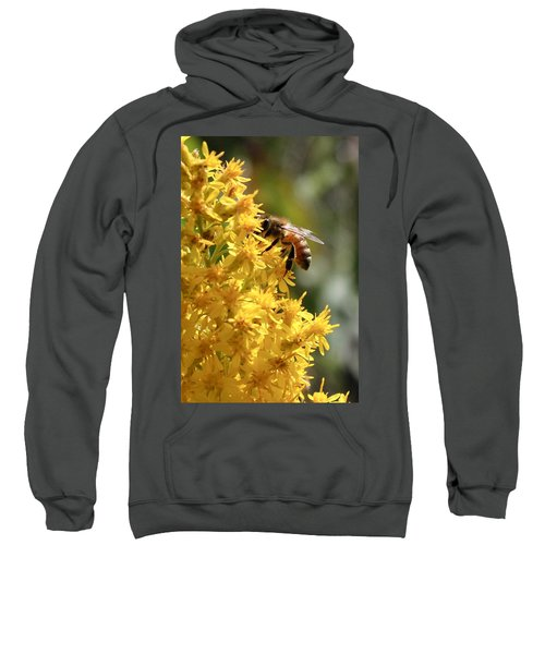 Honeybee On Showy Goldenrod Sweatshirt