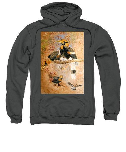 Hornbill  Sweatshirt