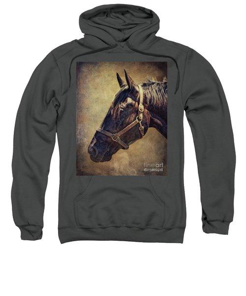 Horse 1 Sweatshirt