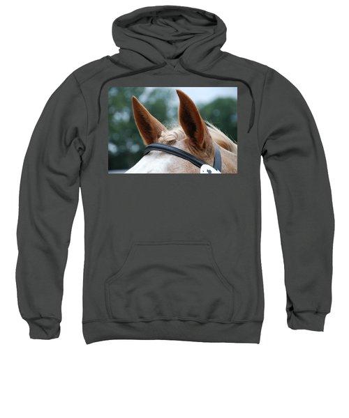 Horse At Attention Sweatshirt