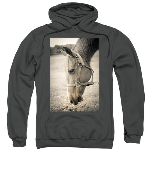Horse Eating In A Pasture Sweatshirt