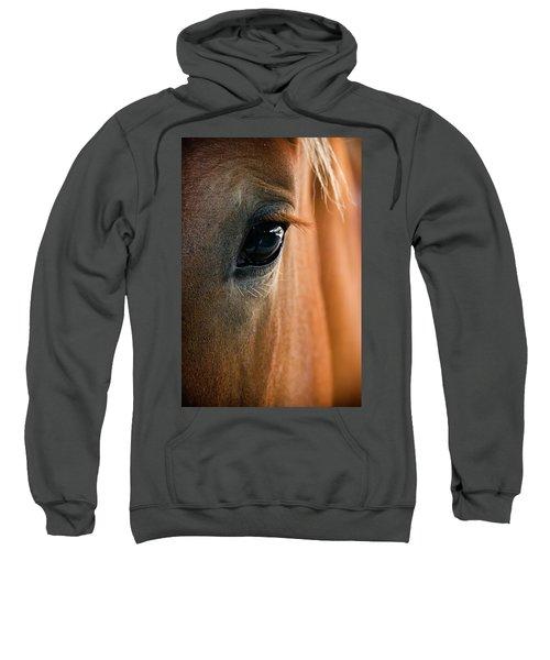 Horse Eye Sweatshirt
